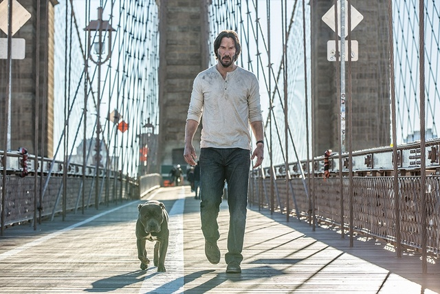 John Wick Chapter 2 review - John and the dog