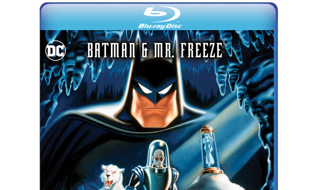 Batman & Mr. Freeze Sub Zero